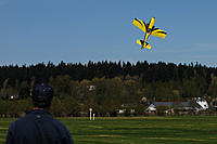 Name: NWEF May 2011 Fly-in2.jpg