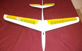 Mark Triebes - Mariah: RC Slope-Soaring Glider - Free Shipping!