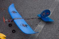 Name: Wiener Dog Plane 001.jpg