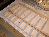 Name: Picture or Video 020.jpg