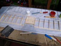 Name: Picture or Video 033.jpg
