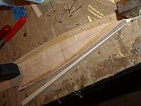 Name: Picture or Video 017.jpg