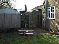 Name: Picture or Video 011.jpg