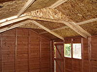Name: Picture or Video 066.jpg