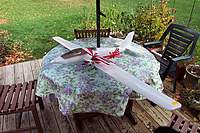 Name: foxcub.jpg
