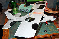Name: decorated-wing.jpg