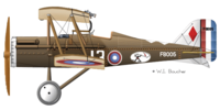 Name: RAF_SE5a-25th_Aero_Squadron-USAS-Capt_Landis-sn-13-(F8005)-Toul_France-Nov-1918-600px.png