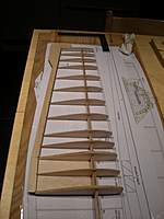 Name: DSCN9455.jpg