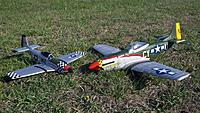 Name: PZ Mustang and Sky Angel Mustang.jpg