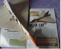 Name: deltacat 2.JPG