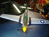 Name: DSC02731.jpg