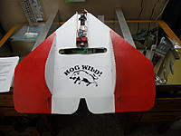 Name: Wild Hog 001.jpg