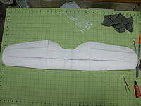 Name: Wing top view.jpg