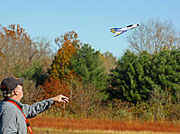 Name: a4388100-172-wd4.jpg