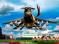 Name: Cow-Plane-79843.jpg Views: 63 Size: 154.7 KB Description: Fantasy