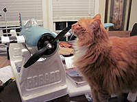 Name: Power10_04.jpg
