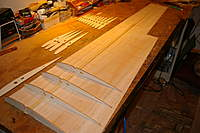 Name: IMGP7447.jpg