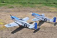 Name: DSC_2119small.jpg