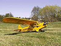 Name: My Sig Cub.jpg