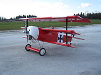 Name: IMG_0653.jpg
