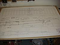 Name: DSC03203.jpg