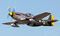 Name: 6-ch-fms-gunfighter-giant-p51-81376big.jpg