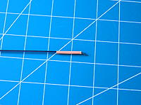 Name: DSCN1559.jpg