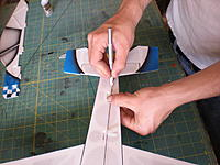 Name: DSCN2608.jpg