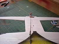 Name: DSCN2617.jpg