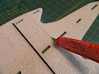 Name: DSCN3510.jpg