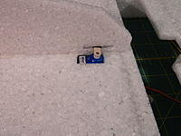 Name: DSCN3548.jpg