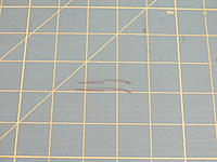 Name: DSCN3568.jpg