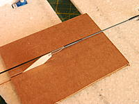 Name: DSCN3570.jpg