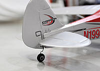 Name: 2DBL9195.jpg