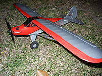 Name: Carbon Cub SS.jpg