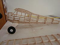 Name: DSC01569.jpg