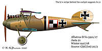 Name: Albatros8.jpg