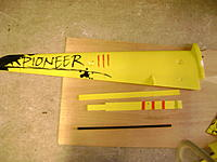 Name: Pioneer wing upper.jpg