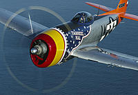 Name: P47 Tarheelhal front.jpg
