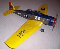 Name: texan2.jpg