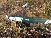 Name: IMG00049-20110910-1254.jpg