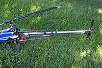 Name: DSC07222.jpg