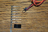 Name: DSC05829.jpg