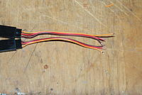 Name: DSC07834.jpg