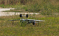 Name: res013.jpg