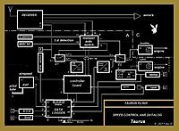 Name: bunny.jpg