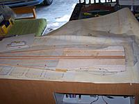 Name: 100_4339.jpg