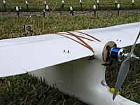Name: DSC00423.jpg
