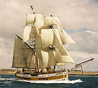 Name: tm71.jpg