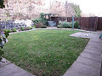 Name: Garden.jpg